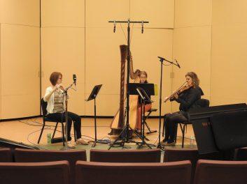June 2016 Deciduous Trio at CT Summerfest